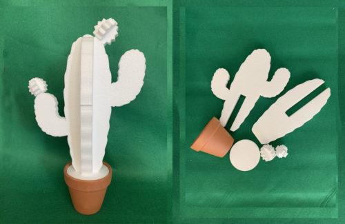 kit decorazione fai da te cactus